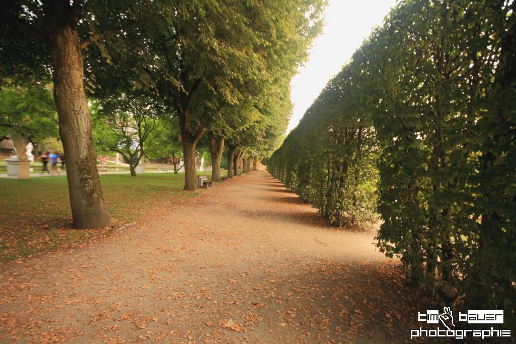 8palastgarten